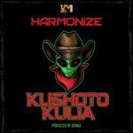 Harmonize – Kushoto Kulia