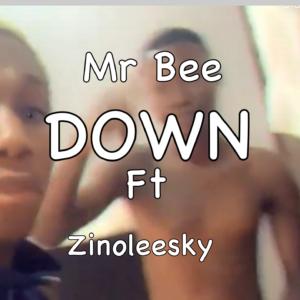 Mr bee – Down ft Zinoleesky MUSIC