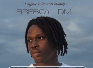 Fireboy Dml – High on Life MUSIC