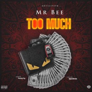 Mr Bee – Too Much MUSIC