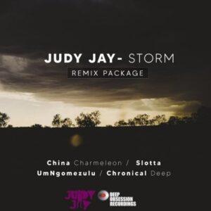 Judy Jay – Storm (China Charmeleon The Animal Mix) Lyrics